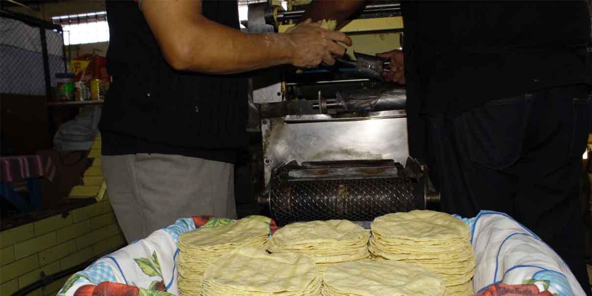 Diciembre sin aumento a la tortilla, podría ser en enero