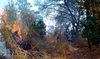 Incendio en la zona del Vaquero en Teotlalcingo, moviliza a las autoridades